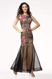 Net Embroidered Gown